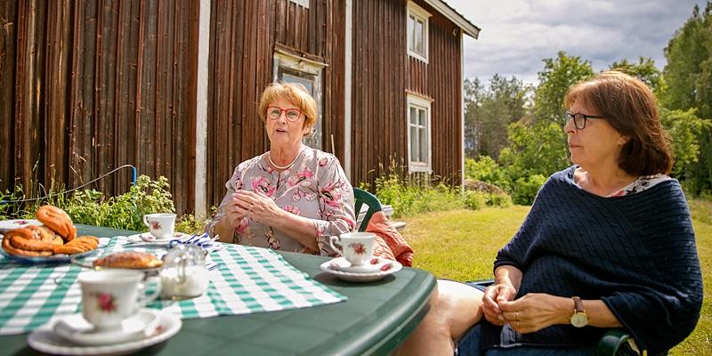 Vihreää aidan molemmin puolin - Katternö Digital 2 | 2019